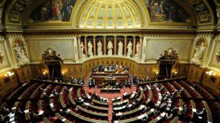 A general view of the hemicycle in the French Senate on 23 January 2012