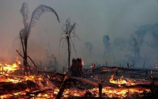 Moro precisa liderar 'resposta enérgica' à criminalidade na Amazônia, cobra Human Rights Watch
