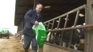 Andrew RT Davies on his farm