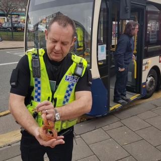 Snake removed from bus in Shipley