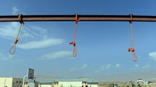 مقامات ریاست زندانهای افغانستان میگویند یک عضو پیشین شورای ولایتی هرات در بین اعدام شدگان است