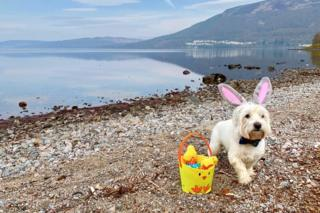 Casper the Easter Bunny stopped off in Kinloch Rannoch on Sunday morning with a delivery of eggs.
