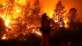 Mendocino Complex fires