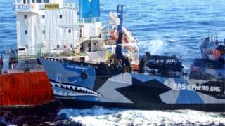 Sea Shepherd vessel Bob Barker collides with Japanese whaling vessel San Laurel in Antarctic waters (25 Feb 2013)