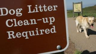 "Sign saying ""Dog litter clean-up required"" with a dog walking past"