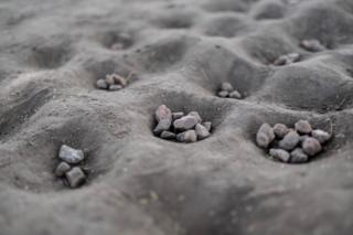 Pebbles lie in holes