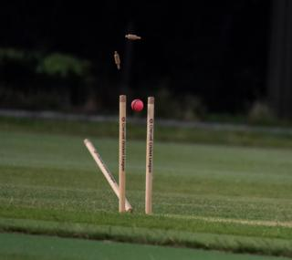 Taken during a 20/20 cricket match between Horspath and Oxford