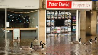 Geese swimming in flooded Hebden Bridge