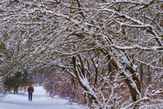 В Ужгороде зимняя сказка началась на несколько дней раньше - его начало засыпать снегом еще с 4 января