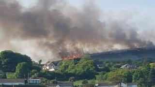 gorse fire in belfast shows smoke rising over the hills