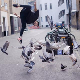 Freerunner behind pigeons