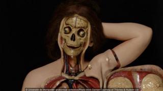 Université de Montpellier anatomical collection/Photo Marc Dantan/Courtesy of Thames & Hudson Ltd
