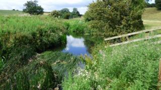 River Skerne at Barmpton