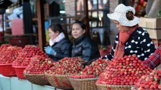 Việt Nam, Úc, dâu tây