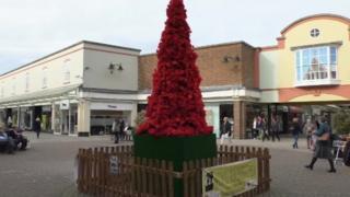 Poppy tree