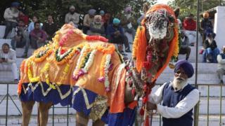 Kila Raipur