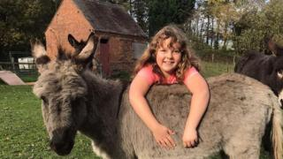 Honey with a donkey at the sanctuary