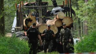Трактор с деревьями
