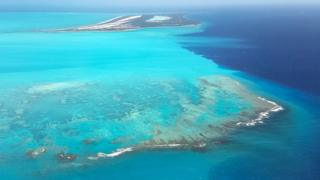 environment Aerial shot of Turks and Caicos' coral reef