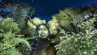 Обличчя чоловіка, спроектоване на ліс