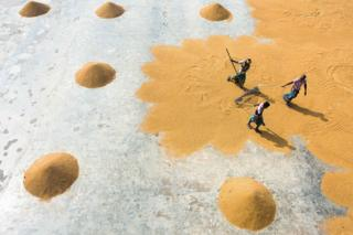 An aerial shot showing people sweeping up grain from the floor