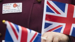 Woman wearing a pro-Brexit badge, holding two British flags
