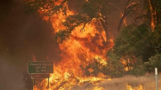 Trees burst into flame during the Carr fire near Whiskeytown, California on July 27, 2018