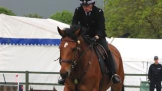 Quantock in a police display