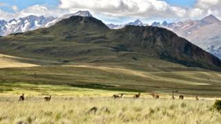 Patagonya Parkı