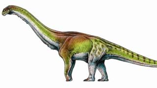An artists impression of the Patagotitan mayorum