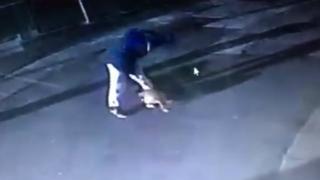Dog attack CCTV