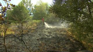 A firefighter using a hose to dampen down flames on woodland