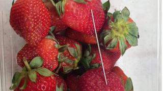 A photo from Queensland police shows a thin piece of metal seen among a punnet of strawberries