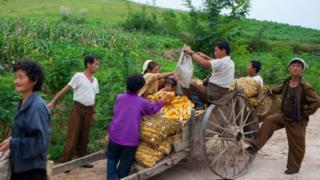 2012년 9월 북한 황해북도에서 촬영된 이 사진에서 농부들이 옥수수를 수레에 담고 있다