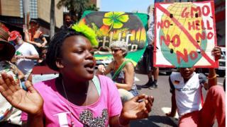 Waandamanaji wakipinga matumizi ya GMO nchini Afrika Kusini mwaka 2013