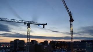 cranes in twilight