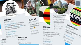Many twitter profiles claiming to be involved with Zanu PF