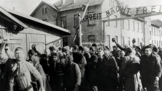 سربازان شوروی اردوگاه آشویتس را در سال ۱۹۴۵ آزاد کردند/ هولوکاست واژهای یونانی به معنای همهسوزی، قربانی کردن همگان در آتش است