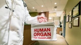 A doctor taking or delivering a bag containing a human organ for transplant
