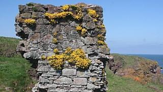 Whistleberry Castle ruins