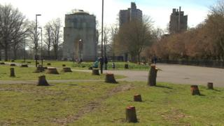 Trees cut in Leicester's Victoria Park
