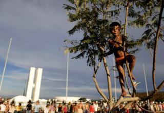 Un niño brasileño subido a un árbol durante las manifestaciones en la capital de Brasil