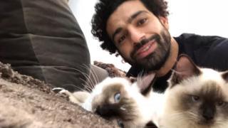 محمد صلاح مع قطتيه في الصورة التي نشرها عبر حسابه على تويتر