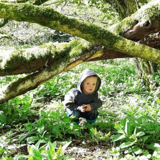 Boys in woods