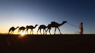सौदी अरेबिया, मध्यपूर्व आखात