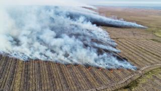 Huge Flow Country wildfire 'doubled Scotland's emissions'