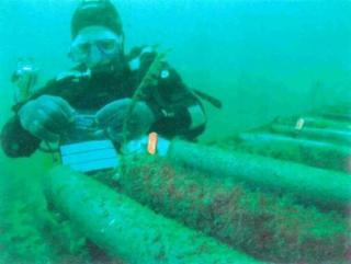 arreglando un cable submarino
