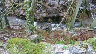 Whinlatter Pass crash scene