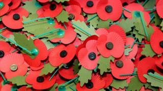 Rememberance Day poppies