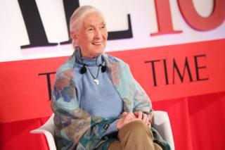 Nhà khoa học Jane Goodall được bình chọn là 1 trong 100 nhân vật có ảnh hưởng nhất thế giới năm 2019